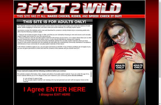 2 Fast 2 Wild