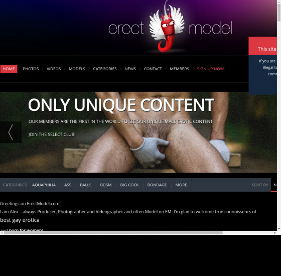 erect model